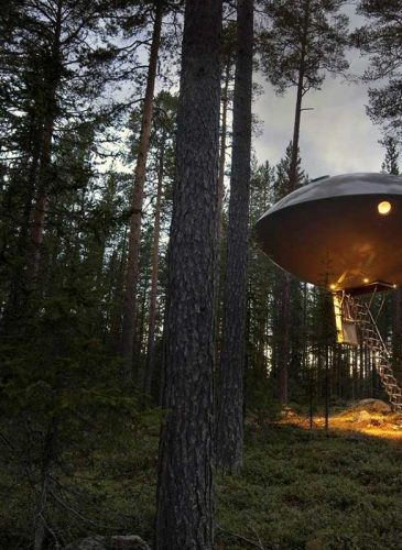 Treehotel-Kozmike