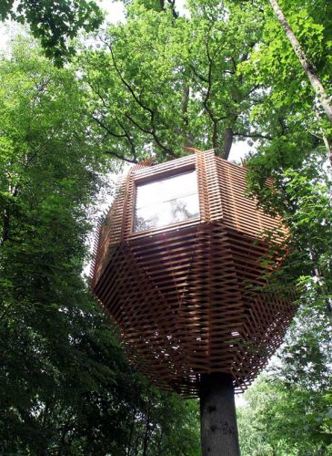 tree_house_Atelier_LAVIT