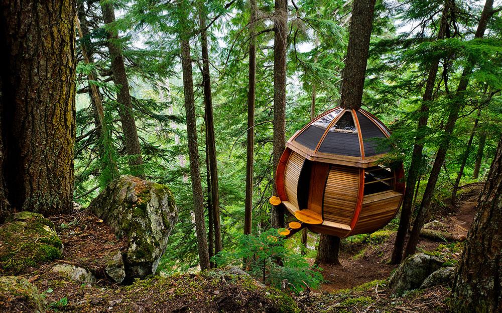 Shtëpitë mbi pemë